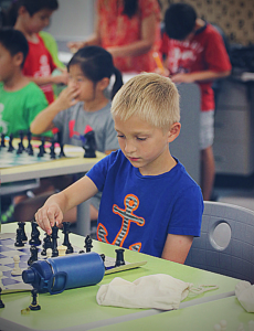 A chess student moves his king out of check.